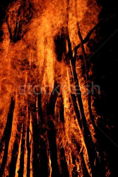 Campfire flames Stock photo © Nneirda