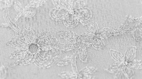 Beautiful lace Stock photo © Nneirda