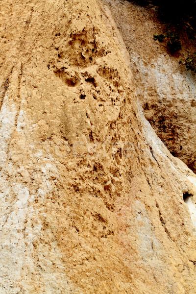 известняк рок лице стены земле Сток-фото © Nneirda
