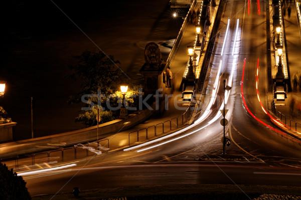 公共交通機関 吊り橋 1泊 ブダペスト 水 車 ストックフォト © Nneirda