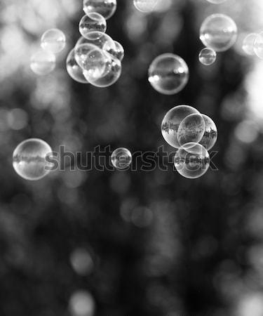 Zeepbellen zilver bubbels bubble blazer water Stockfoto © Nneirda