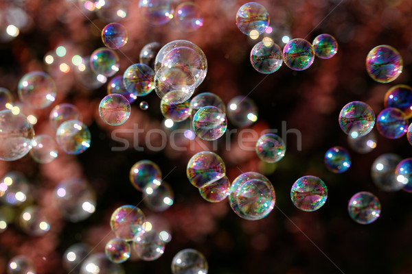 Bulles de savon Rainbow bulles bulle ventilateur design Photo stock © Nneirda