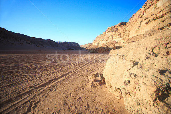 The utterly barren western desert Stock photo © Nneirda