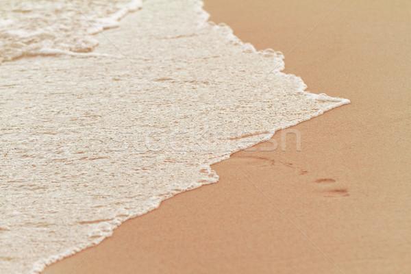 Homokos tengerpart fotó napos nyár tenger háttér Stock fotó © Nneirda