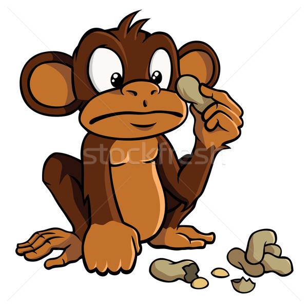 Rajz majom földimogyoró aranyos néz étel Stock fotó © Noedelhap