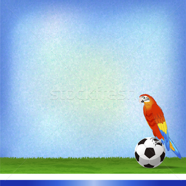 Бразилия футбола Мир Кубок файла градиенты Сток-фото © norwayblue
