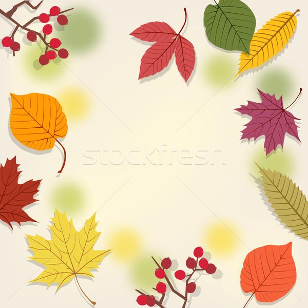 Herbstlaub Herbst Gradienten Maske Bilder Transparenz Stock foto © norwayblue
