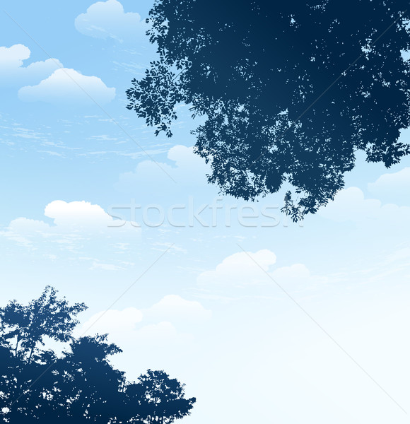 branch silhouette with blue sky background Stock photo © norwayblue