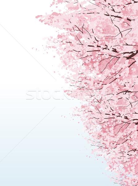 красивой Cherry Blossom деревья маске градиенты Сток-фото © norwayblue