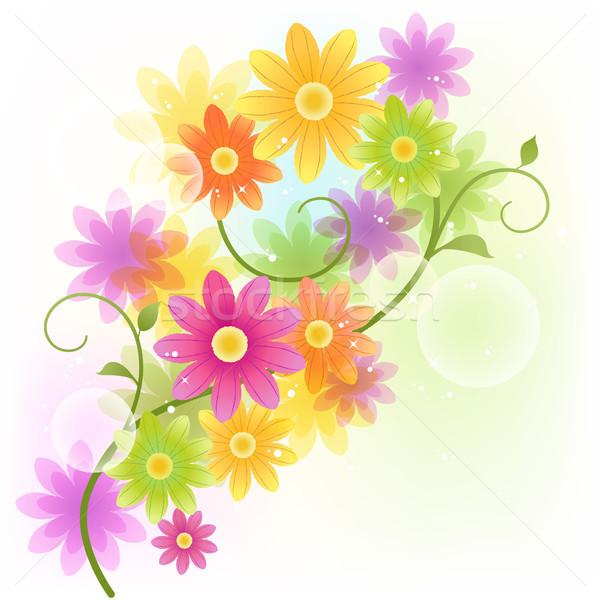 Vector Gerbera flower background Stock photo © norwayblue