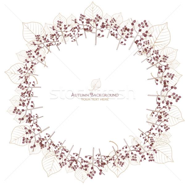 Najaar boom blad ader cirkel lijnen Stockfoto © norwayblue