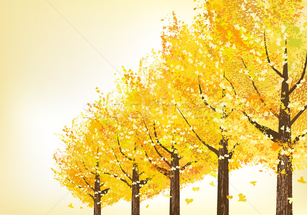 Photo stock: Or · arbres · fin · automne · fichier · route