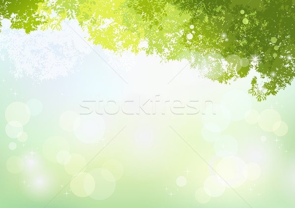 Spring Green background with soft sunlight Stock photo © norwayblue