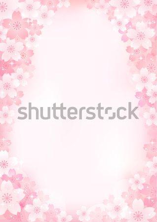 Sakura Cherry blossom background Stock photo © norwayblue