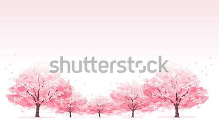 Line Kirschblüten Baum Maske Gradienten transparent Stock foto © norwayblue