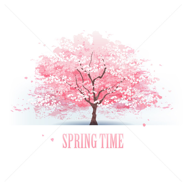Schönen Kirschblüten Baum isoliert Datei Gradienten Stock foto © norwayblue