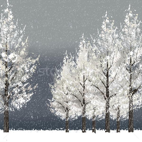 зима ночь деревья файла градиент Сток-фото © norwayblue