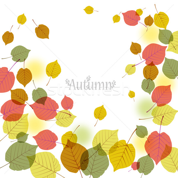 Flying autumn leaves background with space for text Stock photo © norwayblue