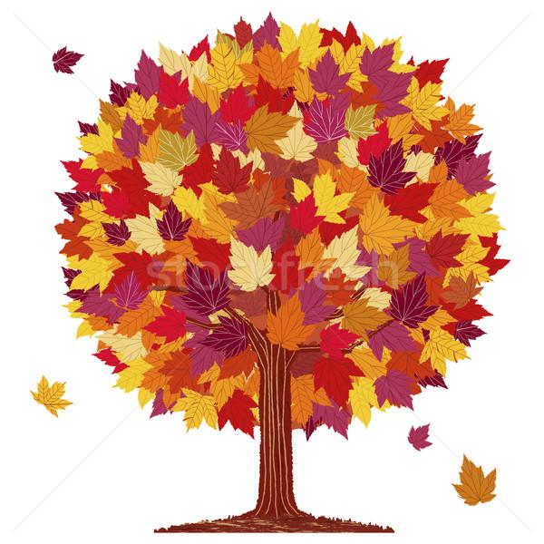 осень лист мяча дерево изолированный красный Сток-фото © norwayblue