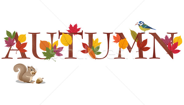 AUTUMN text decorated with leaves, blue bird and squirrel Stock photo © norwayblue