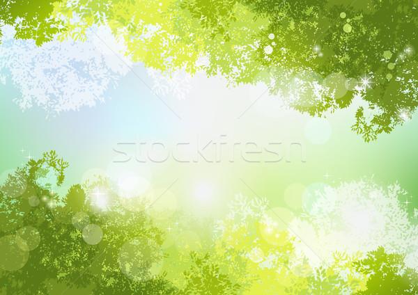 свежие весны зеленый мягкой солнце свет Сток-фото © norwayblue