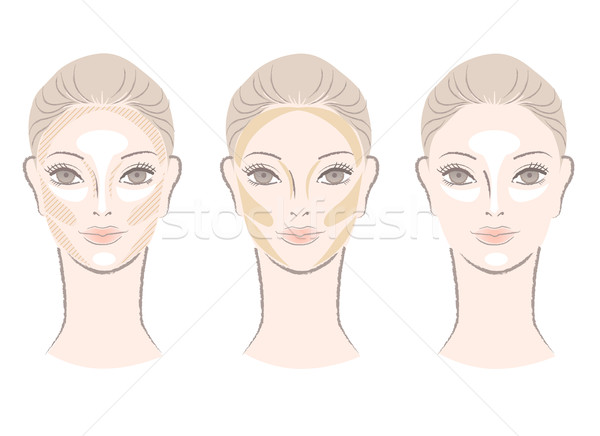Highlighting and contouring area chart for corrective face shape Stock photo © norwayblue