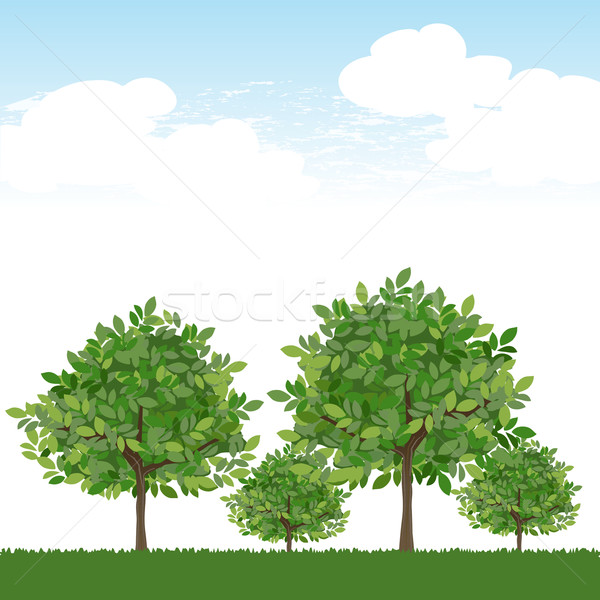 Trees on lush green and blue sky Stock photo © norwayblue