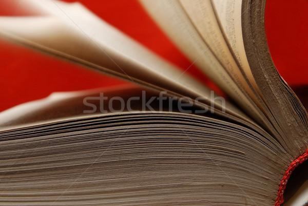 Sabiduría fuente libro viejo símbolo conocimiento Foto stock © Novic