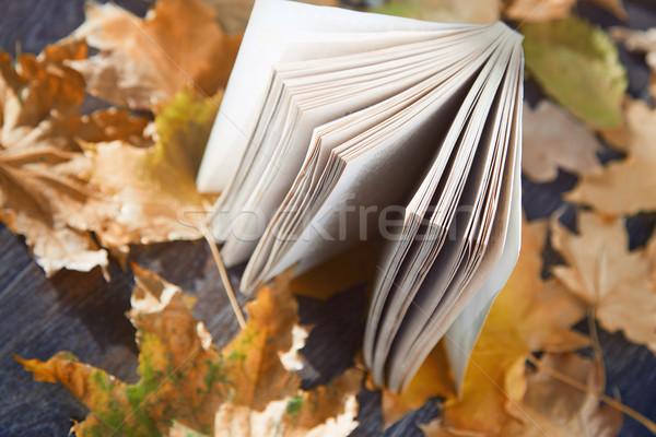 Zdjęcia stock: Jesienią · książki · widoku · streszczenie