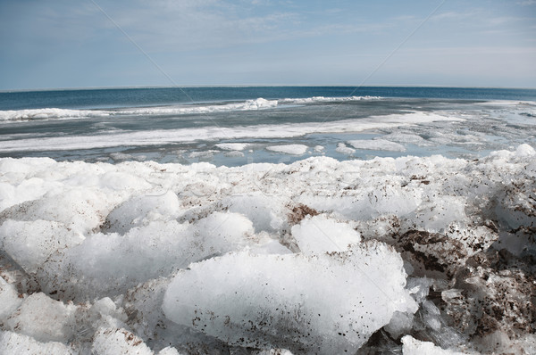 Arctic scene Stock photo © Novic