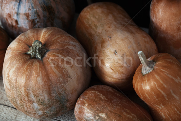 Group of pumpkins on a wooden table Stock photo © Novic