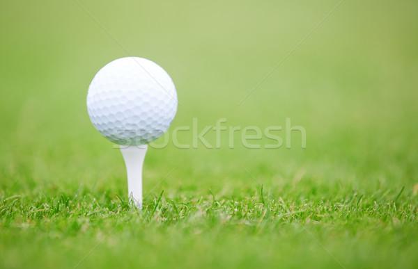 Golf ball Stock photo © Novic
