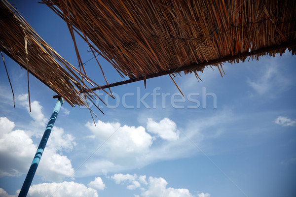 Roof under the summer sky Stock photo © Novic