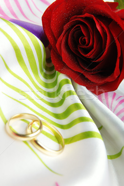 Valentine card Stock photo © Novic