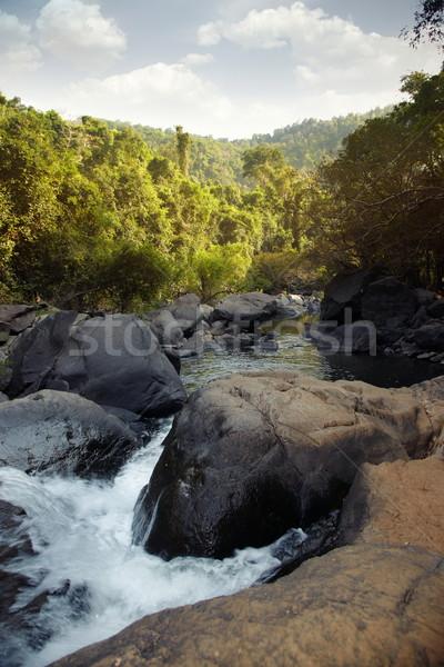 джунгли индийской мелкий реке камней Сток-фото © Novic