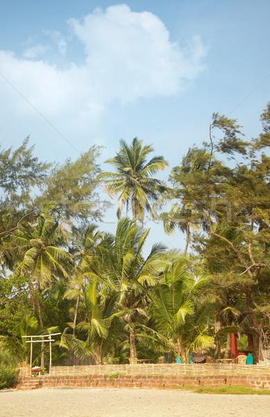 Palm курорта мнение жилой бунгало Сток-фото © Novic