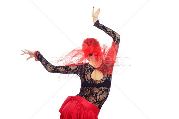 Hát flamenco táncos hátsó nézet nő tánc Stock fotó © Novic