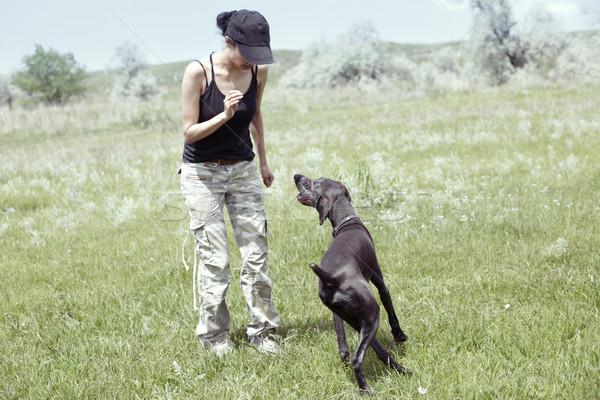 Kutyakiképzés nő kutya kint képzés természetes fény Stock fotó © Novic