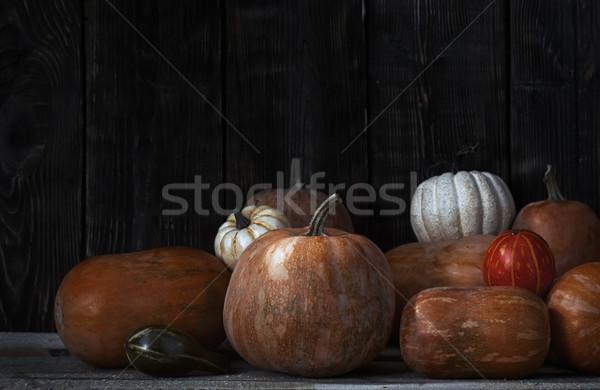 Boglya tökök aratás vidéki hely étel Stock fotó © Novic