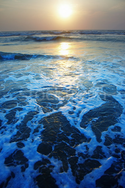 Sunset at the sea Stock photo © Novic