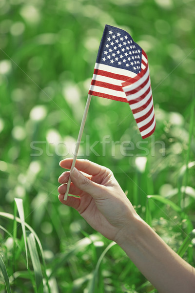 Hand holding US flag for Independence Day Stock photo © Novic