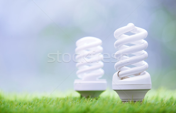 Energy saving bulbs in the grass Stock photo © Novic