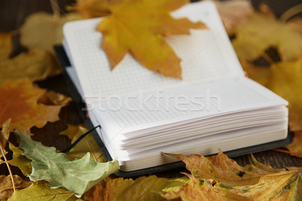 Automne vue notepad texture Photo stock © Novic