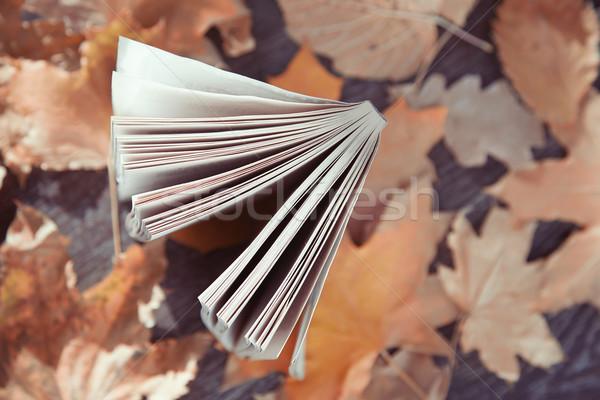 Jesienią książki widoku streszczenie Zdjęcia stock © Novic