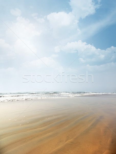 Spiaggia verticale foto estate sabbia vibrante Foto d'archivio © Novic