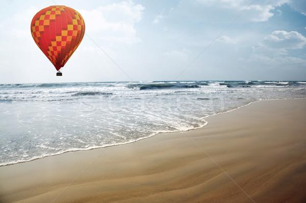 Zee vliegen tropische zomer strand Stockfoto © Novic