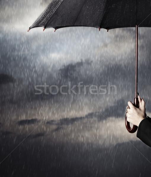 Deszcz ludzi ręce duży czarny Zdjęcia stock © Novic