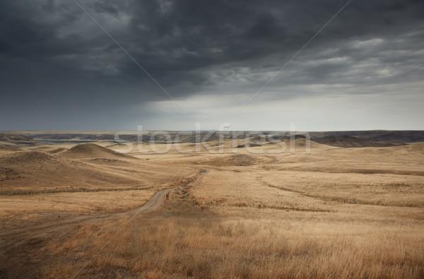 путь мрачный погода дороги природы Сток-фото © Novic