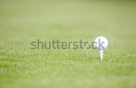 Golf topu yeşil çim fotoğraf spor Stok fotoğraf © Novic
