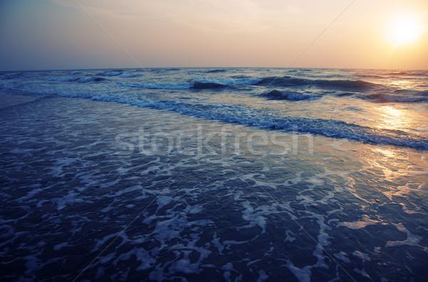 Beauty of the sea Stock photo © Novic